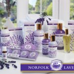 norfolk lavender giftshop